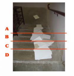 examf01.jpg